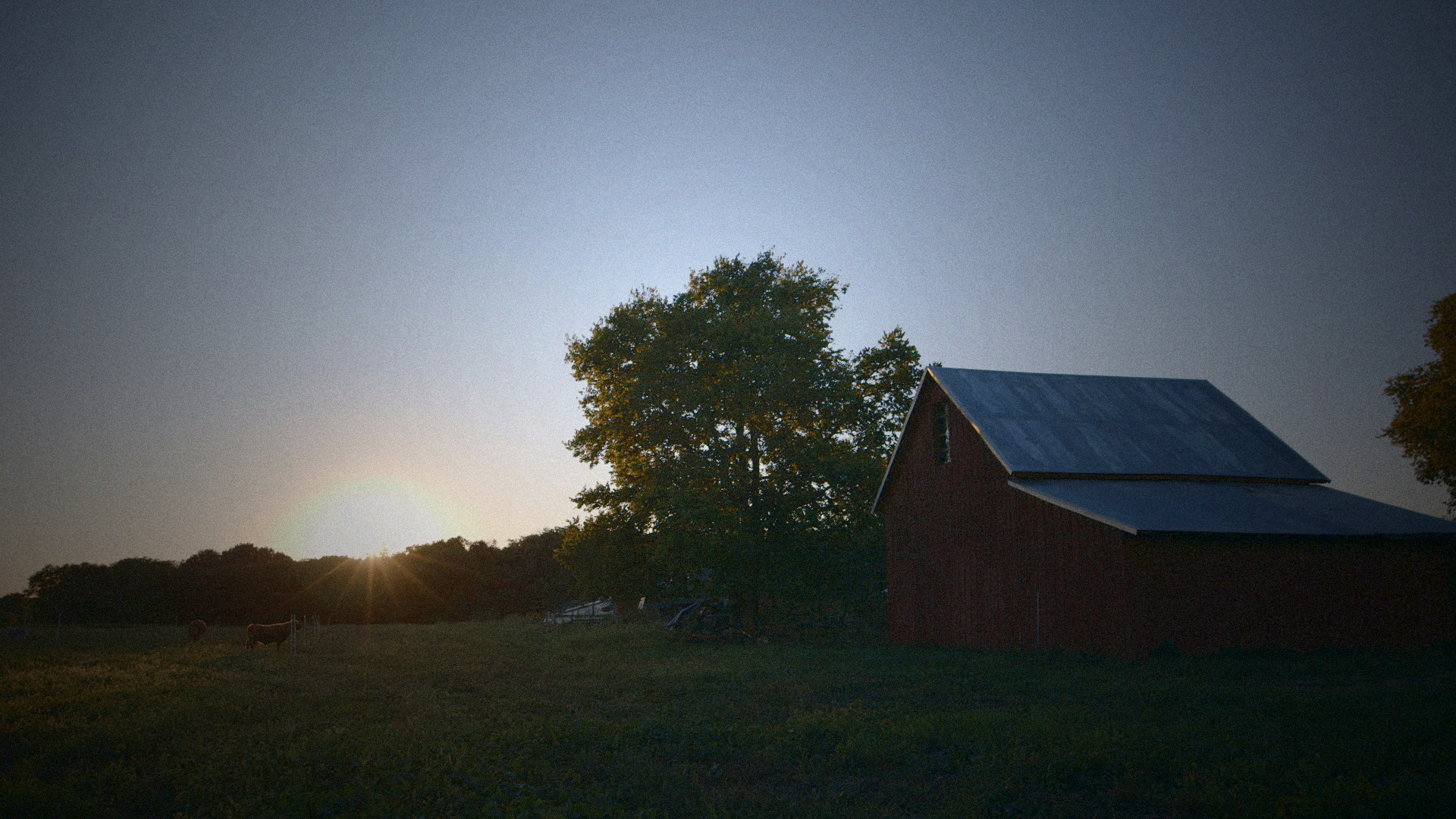 State Farm Online Quote Sustainable A Documentary On The Local Food Movement In America